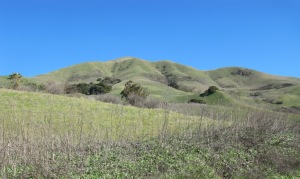 image of beautiful hills decked out in spring green