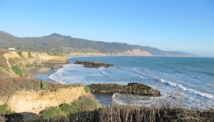 photo of beautiful shoreline of Año Nuevo Bay