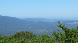 picture of Santa Cruz Mountains
