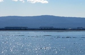 photo of Black Mountain and Moffett Field across the twinkling water surface