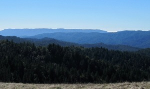 image of western Santa Cruz Mountain foothills, with a small peek at the Pacific Ocean