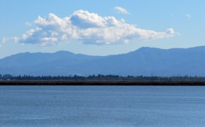 photo of Mt Umunhum and Loma Prieta from Alviso Slough Trail