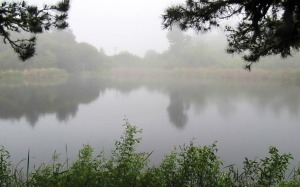 picture of Alpine Pond