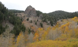 photo of outcropping across the southern Thomas Creek branch's canyon