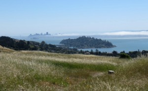 image of Angel Island, San Francisco, and some fog